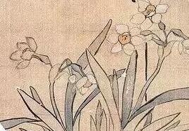 历代名家笔下的水仙欣赏