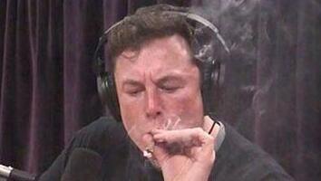 SpaceX二把手称人们过分热衷于关注马斯克的古怪表现